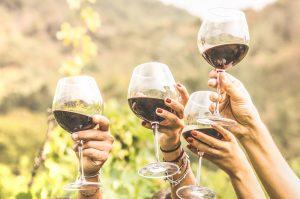 south coast wine tours