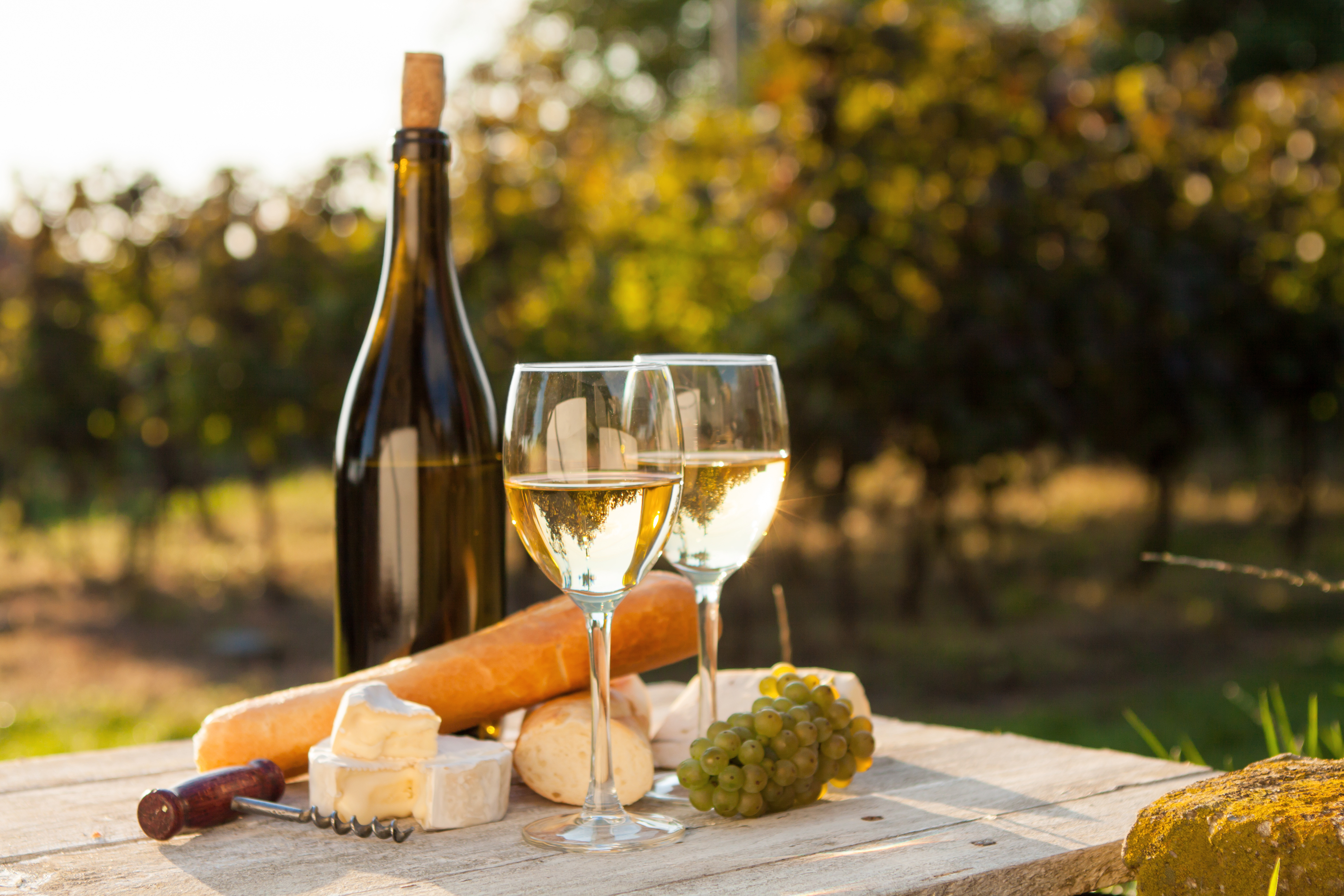 South coast winery tours of nsw